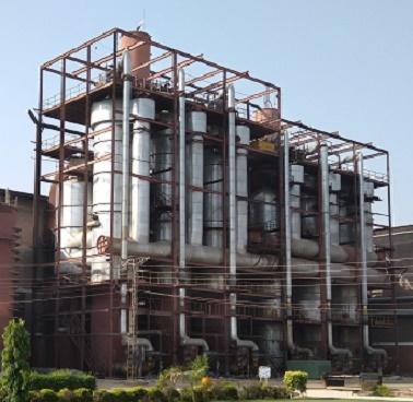 IPRO India
